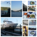 FLAVORS of NFLD