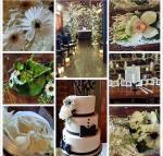 Leo Ori Wedding 2