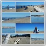 Oregon Newport Beach 1