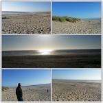 Pacific Coastline Beaches 1