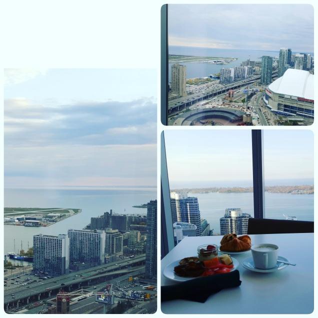 Toronto View 1